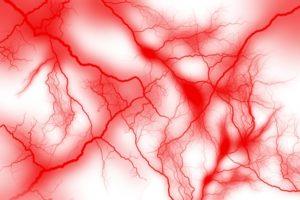 血管の写真