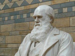 ダーウィンンの銅像の写真