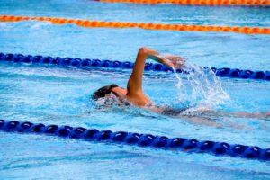 泳いでいる写真