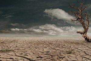 乾燥地帯の写真